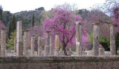 Griechenland, Homöopathie Ausbildung