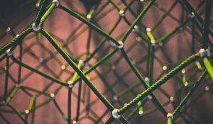 Netzwerk, HomöoCampus, Homöopathie-Seminare