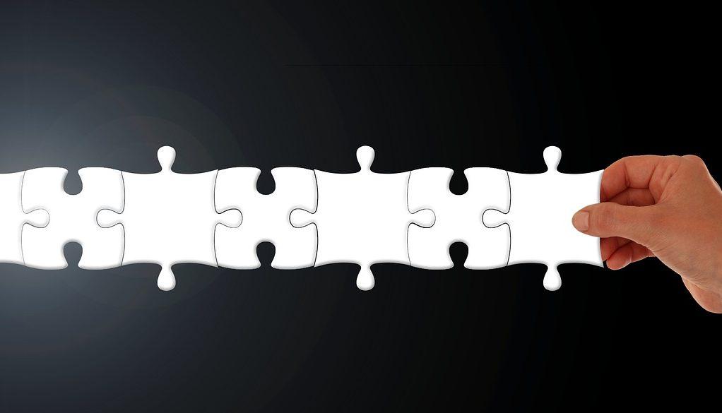Puzzle, Symptomen-Lexikon, Ausbildung, HomöoCampus
